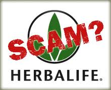 is herbalife a scam